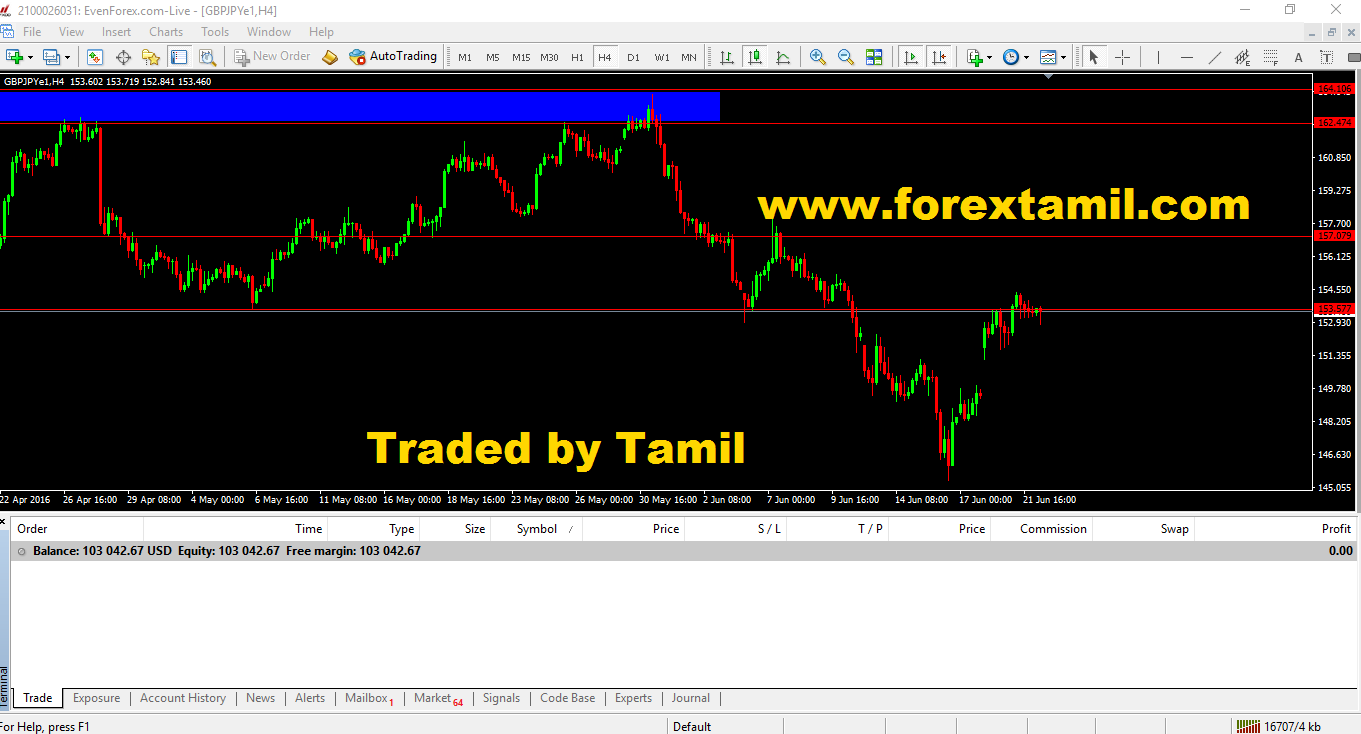 Professional forex trader training