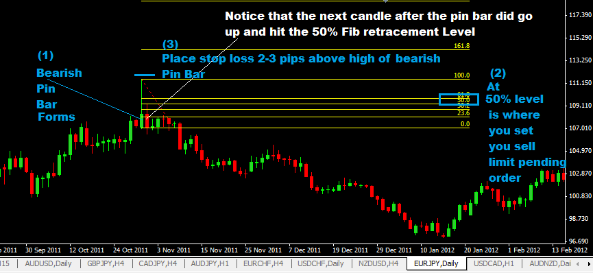Daily Pin Bar Forex Trading Strategy,price action trading strategies