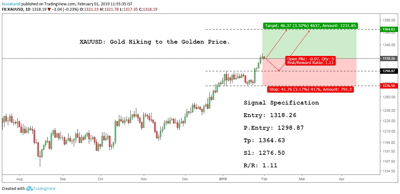 XAUUSD: Gold Hiking to the Golden Price.
