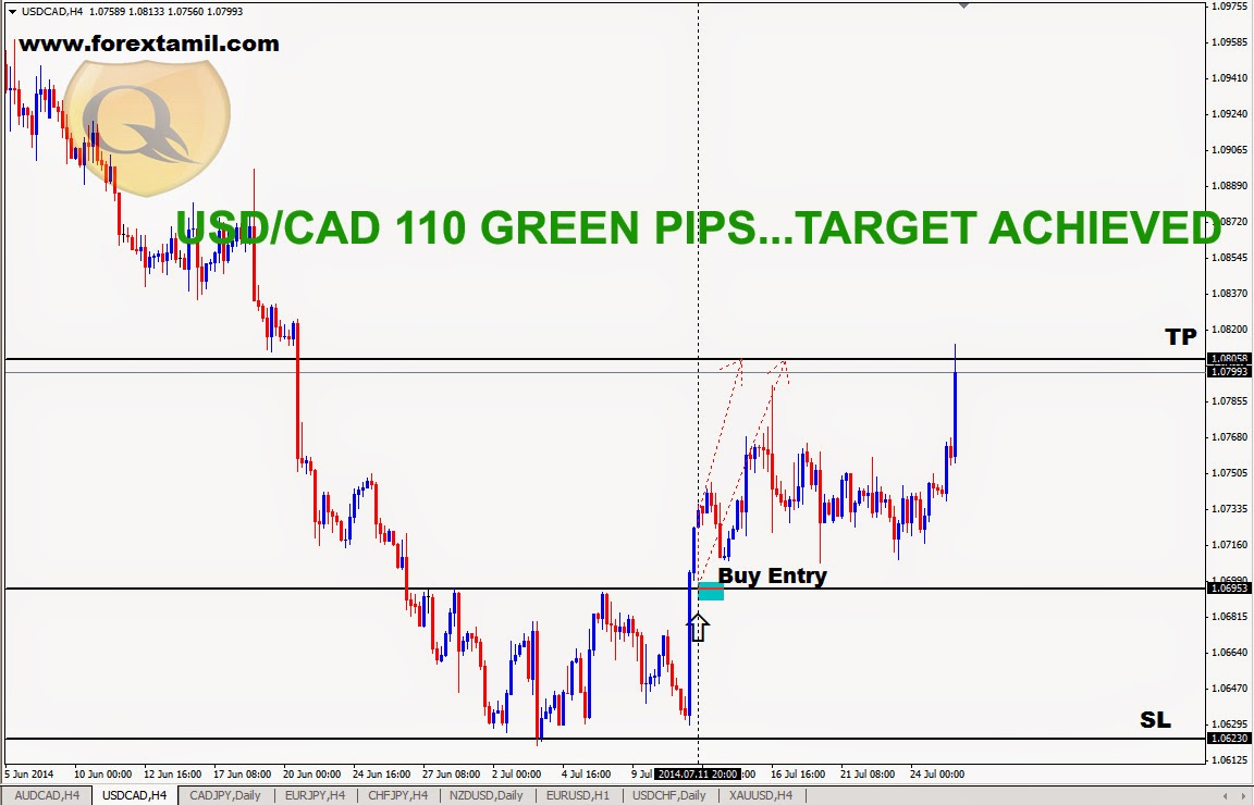 Free Online Forex Signals,Fx Trading Forex,Free Live Forex Signals, Trade Forex Market,Online Forex Business