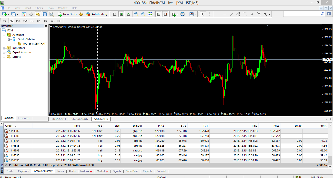 2% profit in new copy trading client account fidelis broker 178$