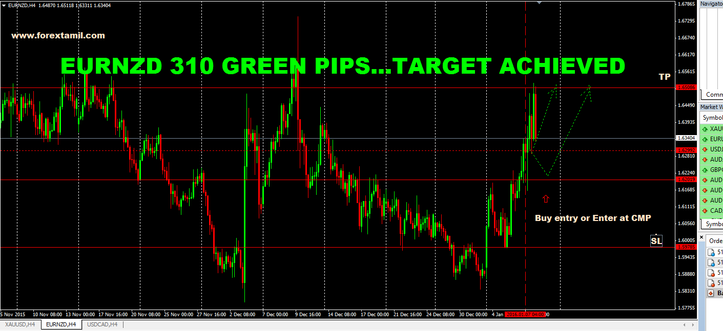 SURE SHOT SIGNAL RESULT: EURNZD 310 GREEN PIPS …..TARGET ACHIEVED
