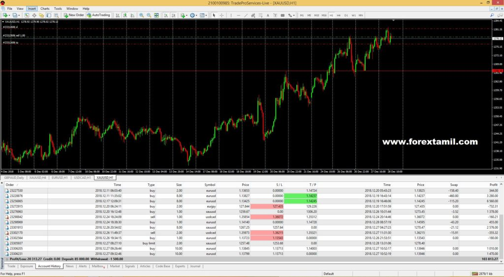 forex account management, forex training, tamil trader, letechs